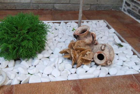 Пустинна роза в декора на двора